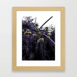 Sparklers Framed Art Print