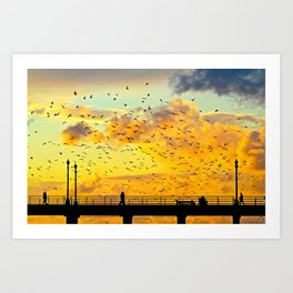 Seagulls ~ Huntington Beach Pier CA Art Print