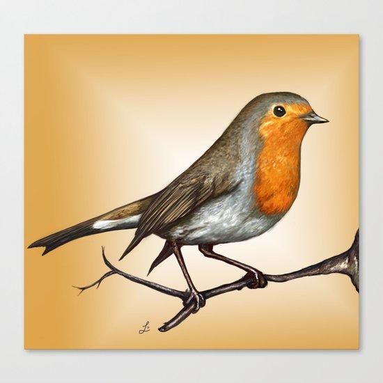 Robin bird Canvas Print