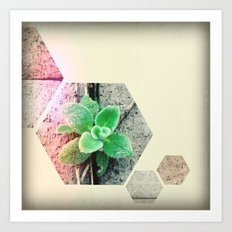 spring has sprung - iPhoneography Art Print