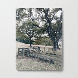Country walks Metal Print