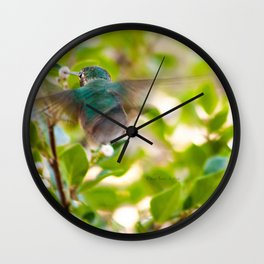 Hummingbird Summer Blur photography by CheyAnne Sexton Wall Clock