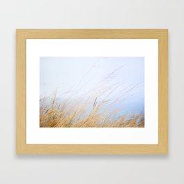04. Britain breeze, Bretagne, France Framed Art Print
