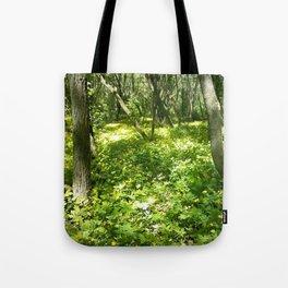 Last Looks Tote Bag