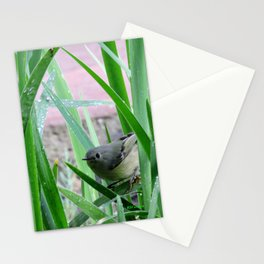 Kinglet Approaching Stationery Cards