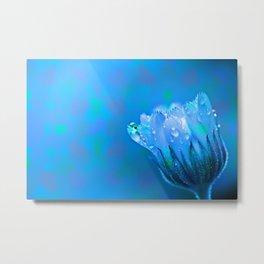 Rose in Blue Metal Print