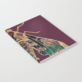 Sphinx Moth Notebook