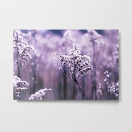 Ultraviolet grasses Metal Print