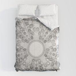 GEOMETRIC NATURE: SEA URCHIN w/b Comforters