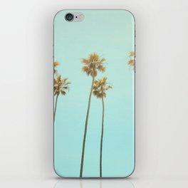 Landscape Photography iPhone Skin