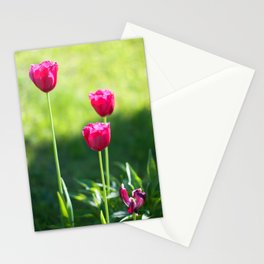 Three pink tulips Stationery Cards