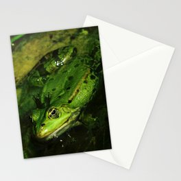 kiss the frog Stationery Cards