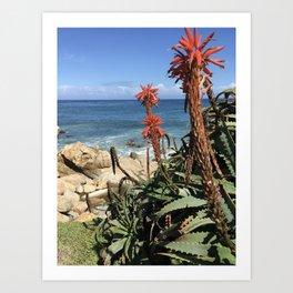 Sunny Monterey Bay Art Print