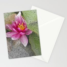 soft water lily IV Stationery Cards