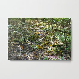 Undergrowth (2017) Metal Print