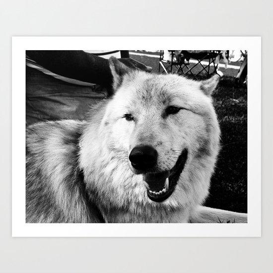 Wolf Dog Art Print