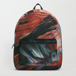 ŸĒL2 Backpack