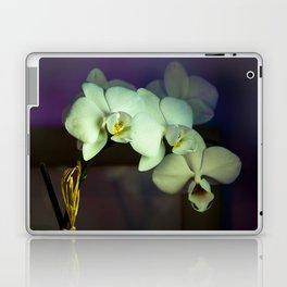 Unterwegs_1576 Laptop & iPad Skin