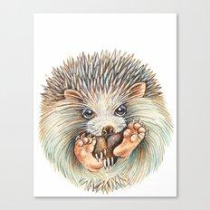 Hedgehog ball Canvas Print