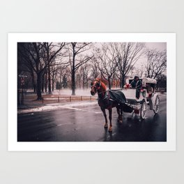 NYC Horse and Carriage Art Print