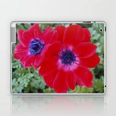 Velvet Red Poppy Anemone I Laptop & iPad Skin