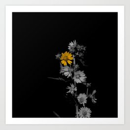 Partial Color Flower Art Print