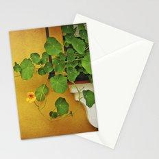 Window Box Stationery Cards