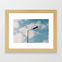 comely Framed Art Print