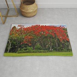 Royal Poinciana Tree Rug
