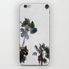 Tropical Palms iPhone & iPod Skin