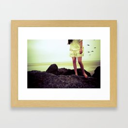 Seabird Framed Art Print