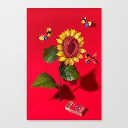 Buzzy Canvas Print