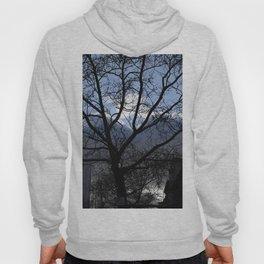 Symmetric Tree Hoody