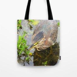 Young Green Heron Tote Bag
