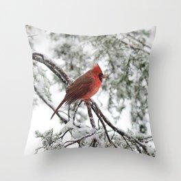 Wet Snow Cardinal (square) Throw Pillow