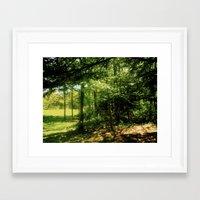 forrest Framed Art Prints featuring forrest by larkinjane