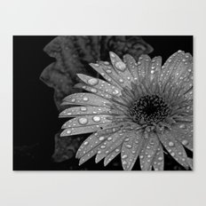 Rain On Me Canvas Print