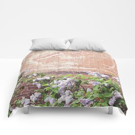 Vintage Advertisement and Lilacs Comforters