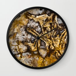 Sequoia Tree Cross Section Wall Clock