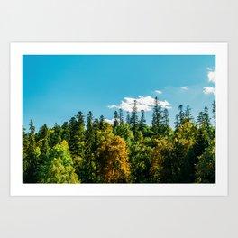 Carpathian Mountains Landscape, Summer Landscape, Transylvania Mountains, Forests Of Romania Art Print