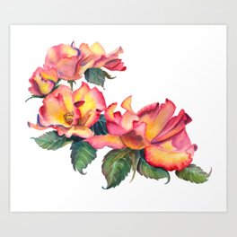 Watercolor Tea Rose Grouping Art Print