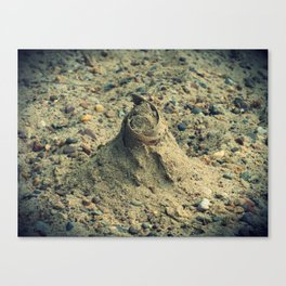 Sand Mound Canvas Print