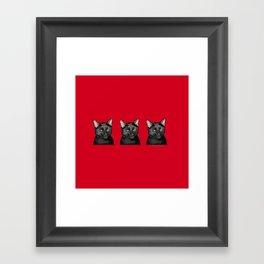 Three Black Cats on Red Framed Art Print