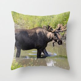 Moose standing in the water Throw Pillow