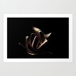 folds Art Print