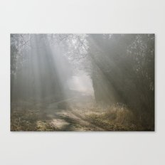 Sunlight through mist along a remote country track. Norfolk, UK. Canvas Print