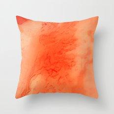 pt. 1 Throw Pillow