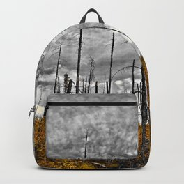the wilderness Backpack