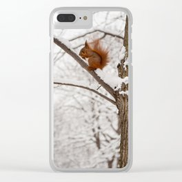 Squirrel sitting on twig in snow Clear iPhone Case