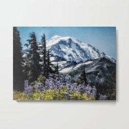Scenic Art, Mt. Rainier, Mt. Rainier National Park, Spray Park Metal Print